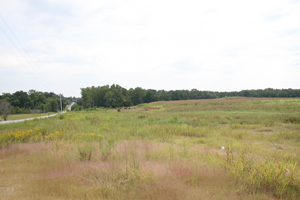 Meritage had asked the Village of Wesley Chapel for a rezoning on this land to allow for denser residential development. Photo by Payton Guion